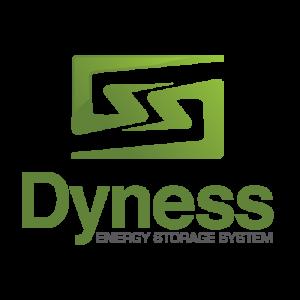 Dyness